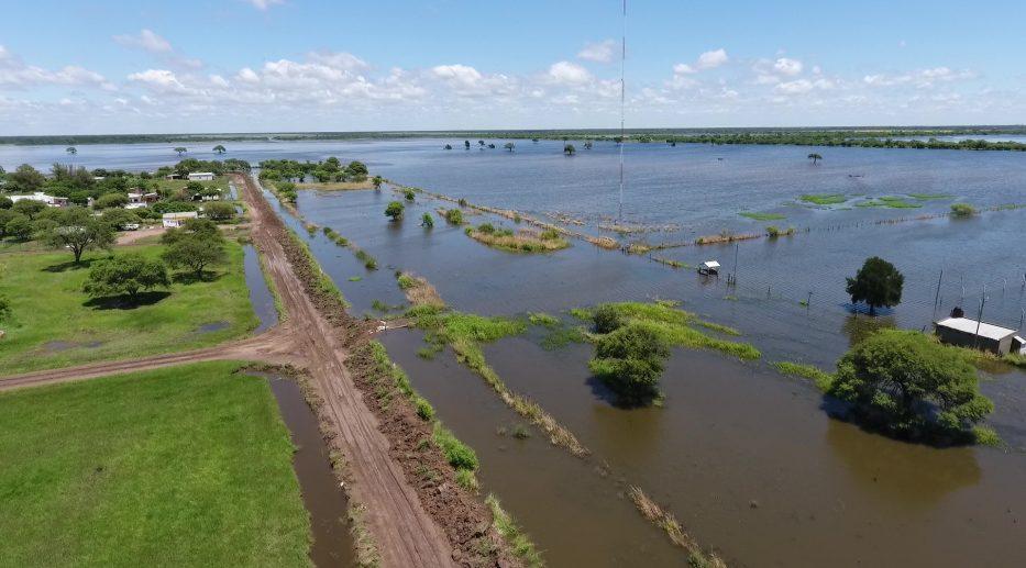 Por las inundaciones en el norte se perdieron más de 7 mil hectáreas de algodón