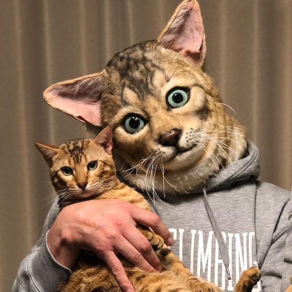 Convertite en el doble de tu gato con estas increíbles máscaras realistas