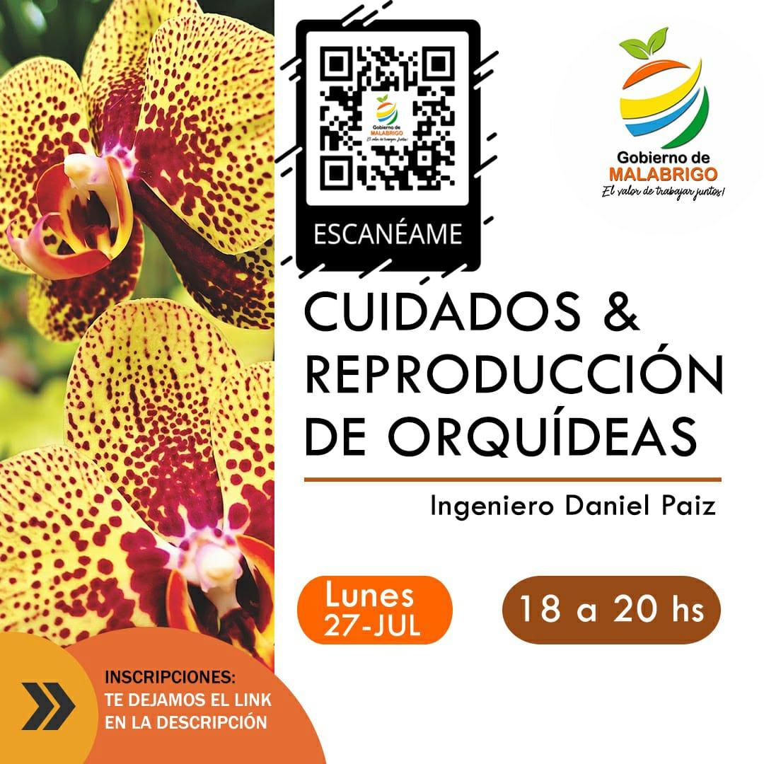 """Malabrigo: el lunes se realizará el curso de """"Cuidados y Reproducción de Orquídeas"""""""