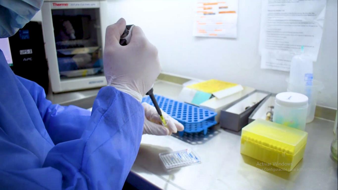 Destacan los tratamientos con plasma de pacientes recuperados de COVID-19