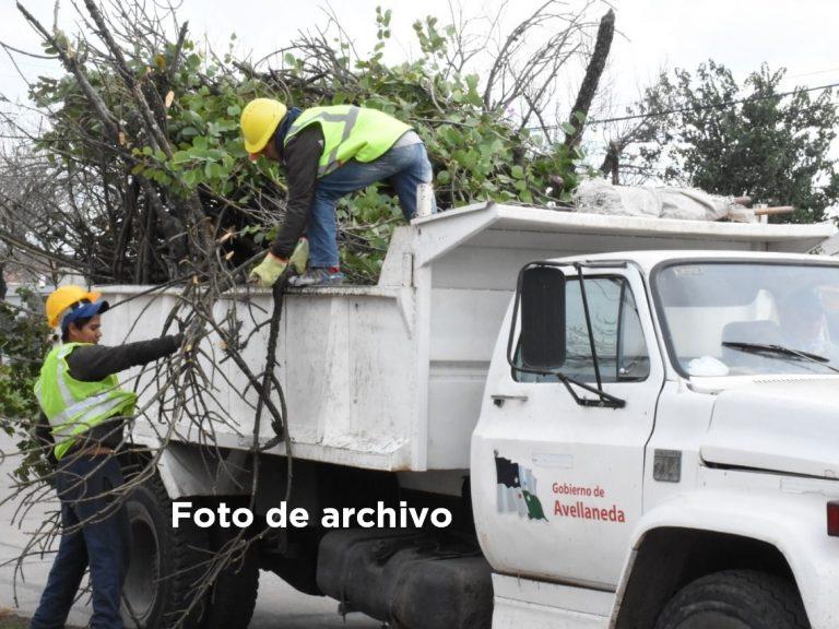 Recolección de ramas y cacharros, es el turno del sector 1 A