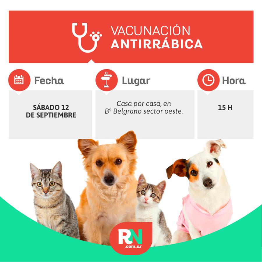 Vacunación Antirrábica en B° Belgrano sector oeste