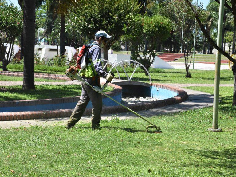 Dengue: Avellaneda refuerza los operativos de cortes de pasto y desmalezado