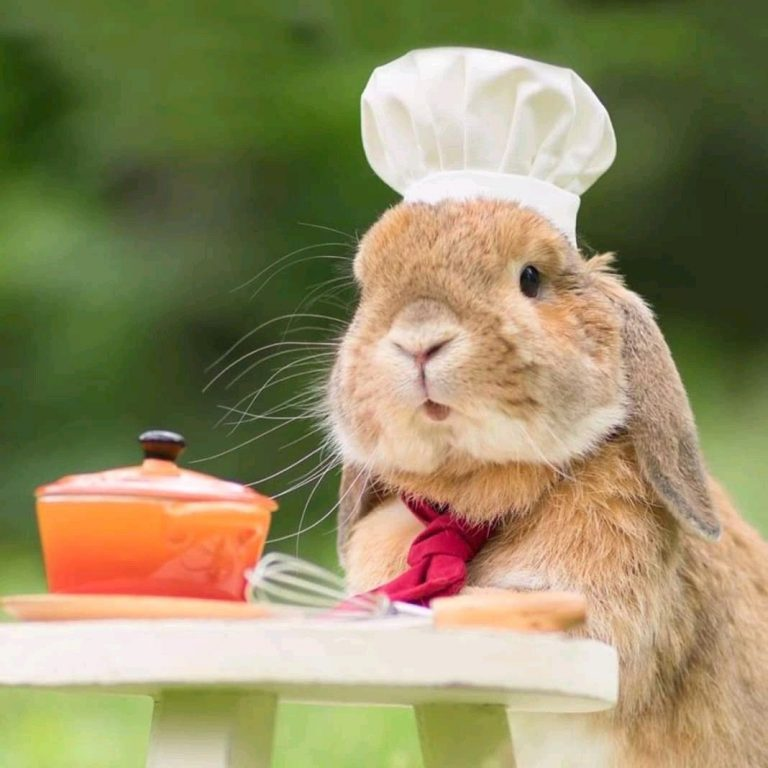 Un chef muy pequeño