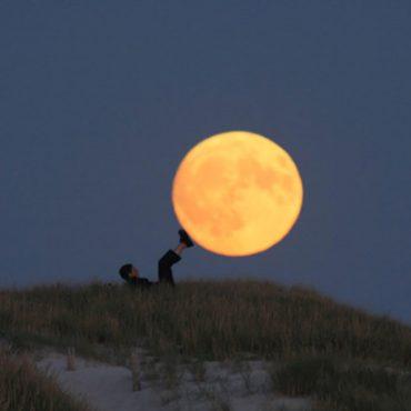 Lavender-luna-1