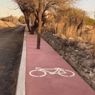 ¿Bicisenda para bicis o árboles?